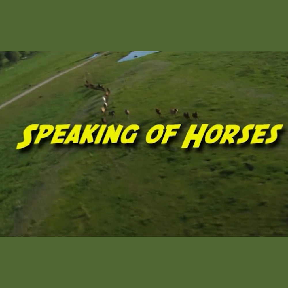 Speaking of Horses