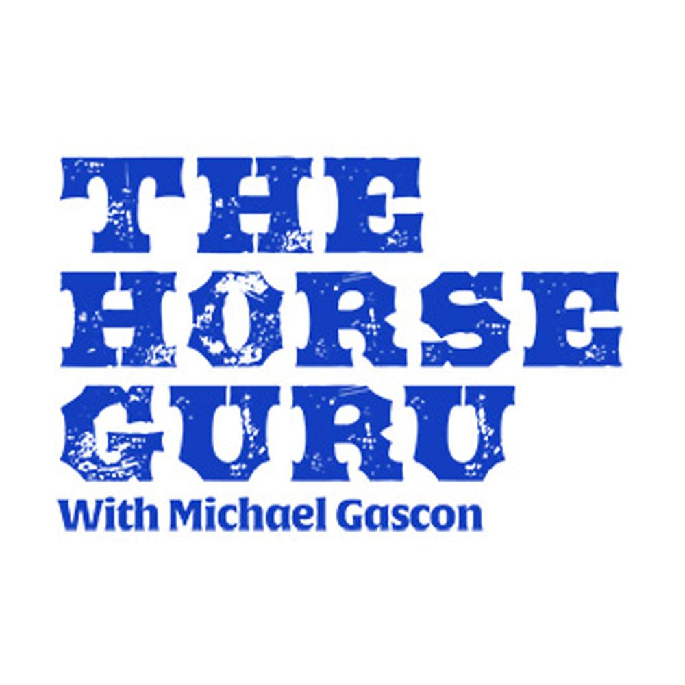 The Horse Guru