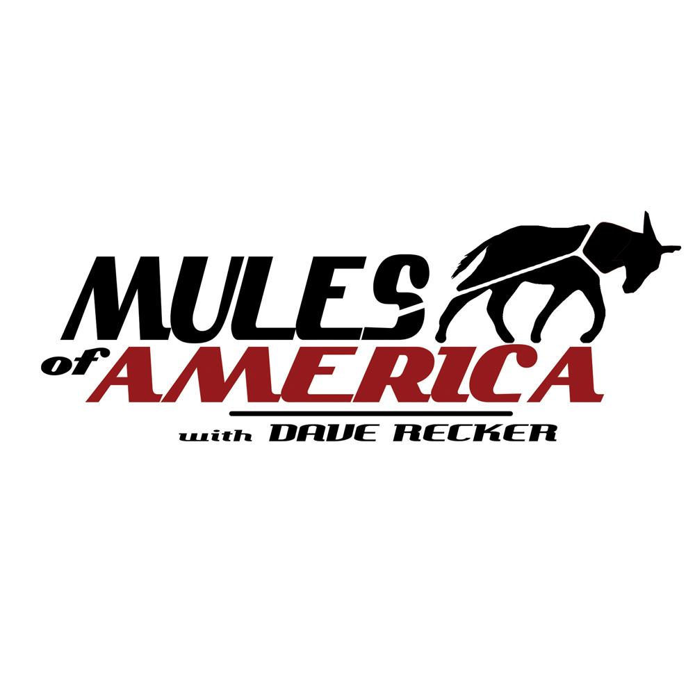 Mules of America TV